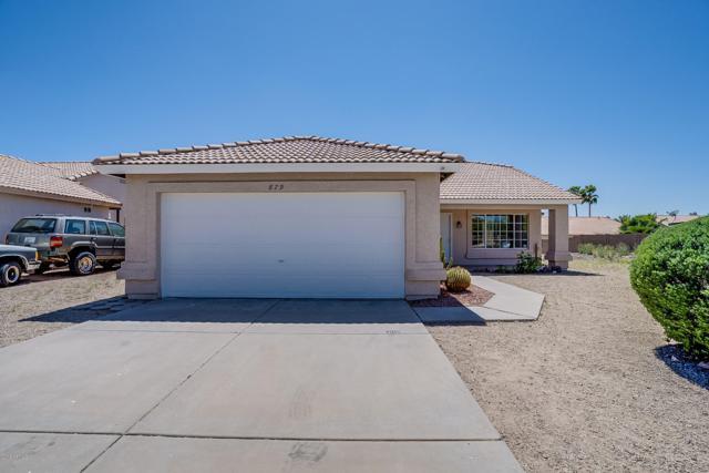 879 W 12TH Avenue, Apache Junction, AZ 85120 (MLS #5909852) :: Yost Realty Group at RE/MAX Casa Grande