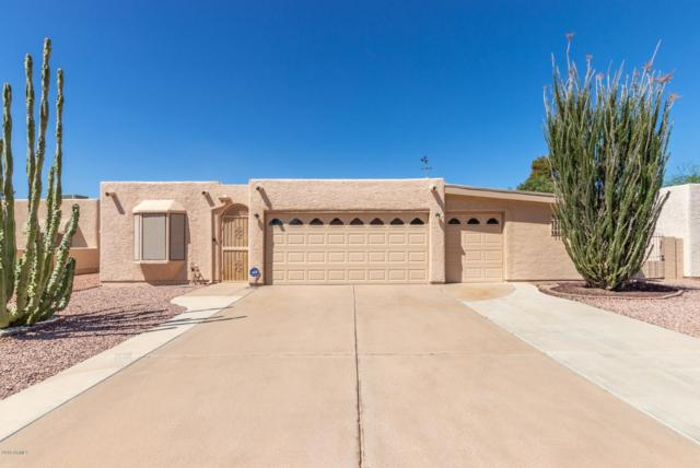 9429 E Sun Lakes Boulevard N, Sun Lakes, AZ 85248 (MLS #5909869) :: Occasio Realty