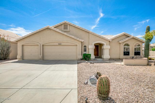3029 E South Fork Drive, Phoenix, AZ 85048 (MLS #5909872) :: Yost Realty Group at RE/MAX Casa Grande