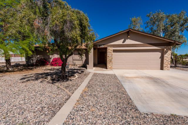 5135 N 196TH Avenue, Litchfield Park, AZ 85340 (MLS #5909906) :: Yost Realty Group at RE/MAX Casa Grande