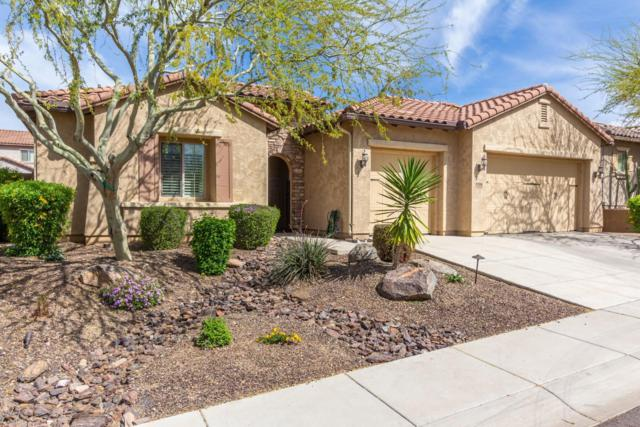 1734 W Yellow Bird Lane, Phoenix, AZ 85085 (MLS #5909924) :: Team Wilson Real Estate