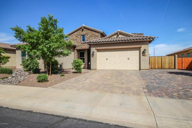 4165 N 181ST Lane, Goodyear, AZ 85395 (MLS #5909932) :: CC & Co. Real Estate Team