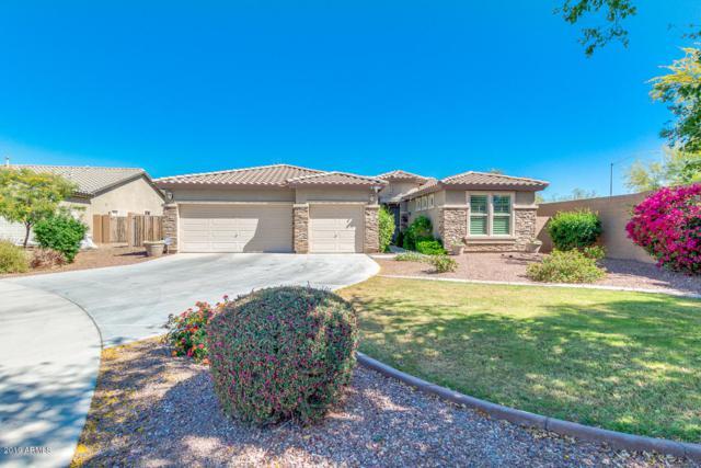 10182 W Patrick Lane, Peoria, AZ 85383 (MLS #5909938) :: Yost Realty Group at RE/MAX Casa Grande