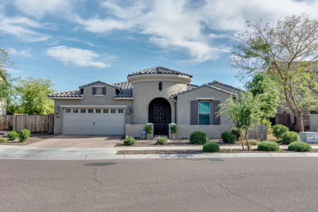 20219 E Rosa Road, Queen Creek, AZ 85142 (MLS #5909945) :: Riddle Realty
