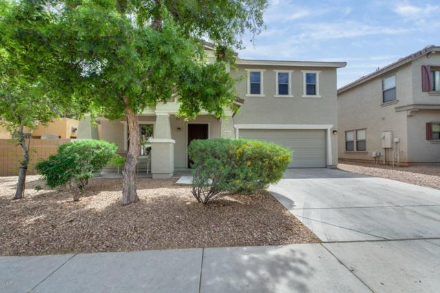 6361 W Barbara Avenue, Glendale, AZ 85302 (MLS #5909964) :: Yost Realty Group at RE/MAX Casa Grande