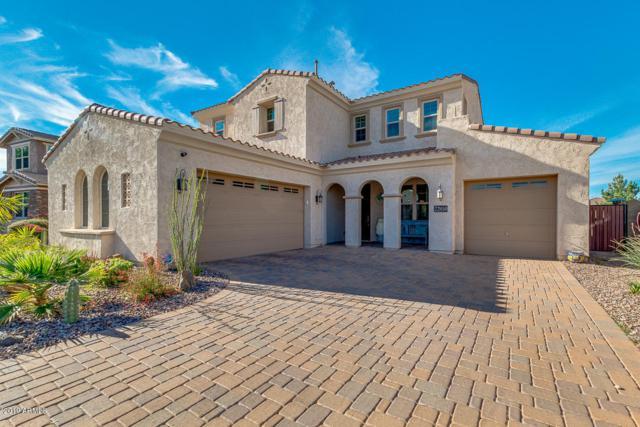 22050 E Rosa Road, Queen Creek, AZ 85142 (MLS #5909966) :: Yost Realty Group at RE/MAX Casa Grande
