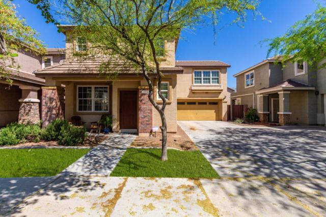 2234 E Fraktur Road, Phoenix, AZ 85040 (MLS #5909975) :: Yost Realty Group at RE/MAX Casa Grande