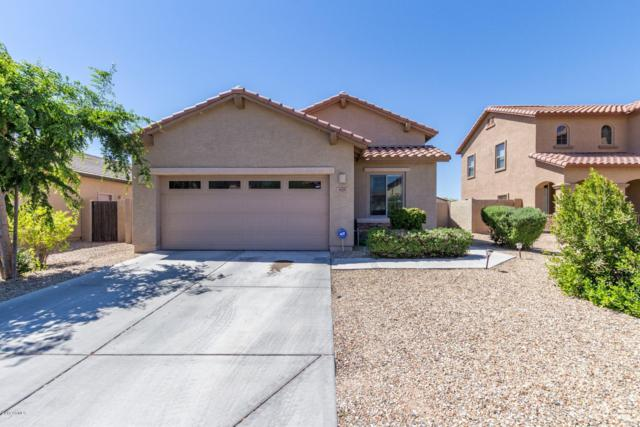 929 E Harrison Drive, Avondale, AZ 85323 (MLS #5910012) :: Yost Realty Group at RE/MAX Casa Grande
