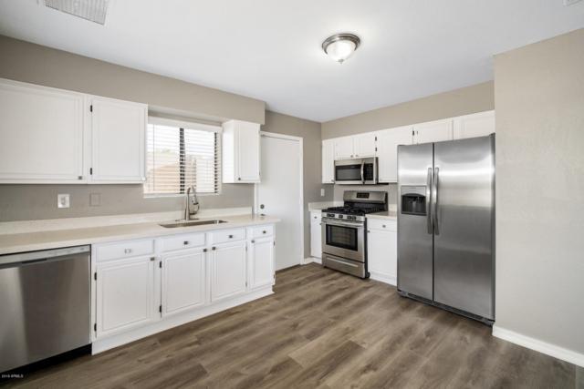 1101 S 1ST Street, Avondale, AZ 85323 (MLS #5910041) :: Lux Home Group at  Keller Williams Realty Phoenix
