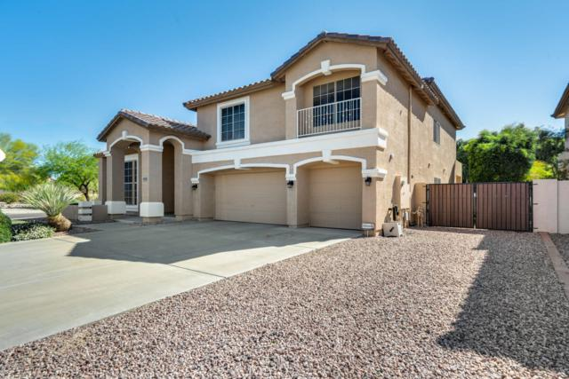 25287 N 74TH Avenue, Peoria, AZ 85383 (MLS #5910047) :: Yost Realty Group at RE/MAX Casa Grande