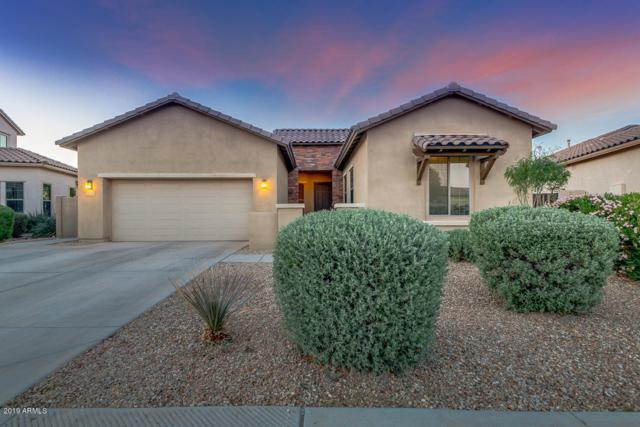 17674 W Verdin Road, Goodyear, AZ 85338 (MLS #5910049) :: Revelation Real Estate
