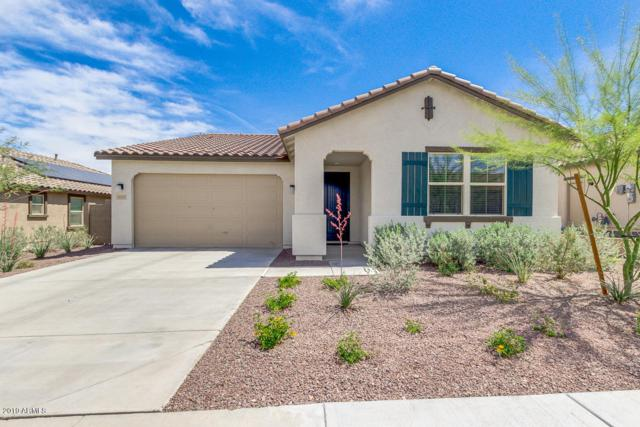 14925 S 180TH Avenue, Goodyear, AZ 85338 (MLS #5910056) :: Kortright Group - West USA Realty