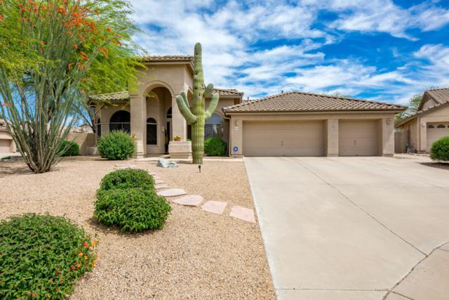 4949 E Skinner Drive, Cave Creek, AZ 85331 (MLS #5910066) :: Yost Realty Group at RE/MAX Casa Grande