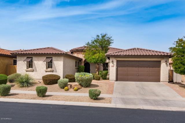 1816 W Bramble Berry Lane, Phoenix, AZ 85085 (MLS #5910079) :: Yost Realty Group at RE/MAX Casa Grande