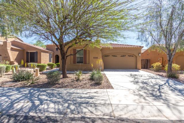 31091 N 136TH Lane, Peoria, AZ 85383 (MLS #5910104) :: Yost Realty Group at RE/MAX Casa Grande
