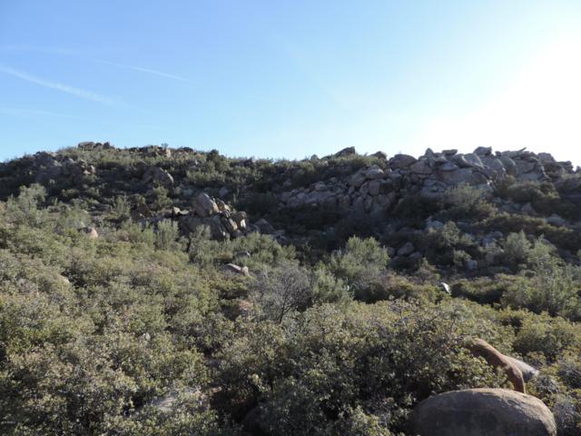 41.9 acres Parcel# 252-25-017 N, Wikieup, AZ 85360 (MLS #5910137) :: Yost Realty Group at RE/MAX Casa Grande