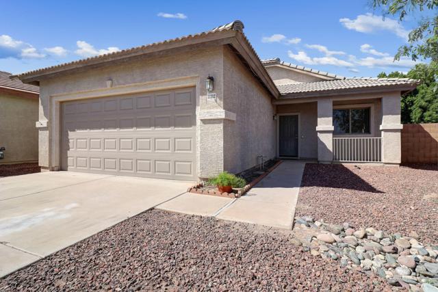 11202 W Holly Street, Avondale, AZ 85392 (MLS #5910169) :: Yost Realty Group at RE/MAX Casa Grande