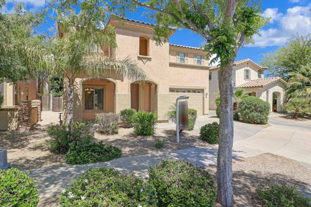 21168 E Munoz Street, Queen Creek, AZ 85142 (MLS #5910212) :: Yost Realty Group at RE/MAX Casa Grande
