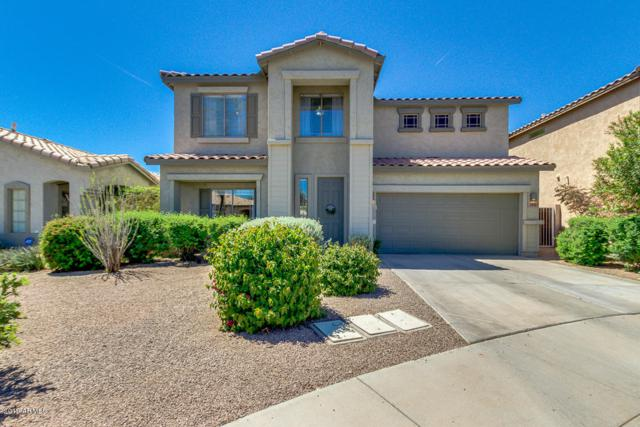 2661 E Waterview Court, Chandler, AZ 85249 (MLS #5910222) :: RE/MAX Excalibur