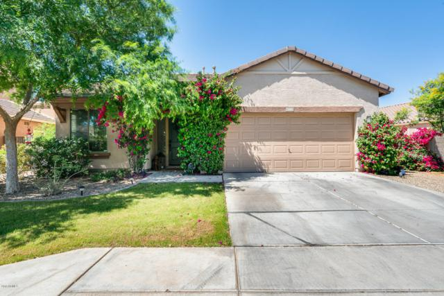 140 S 107TH Drive, Avondale, AZ 85323 (MLS #5910223) :: Yost Realty Group at RE/MAX Casa Grande