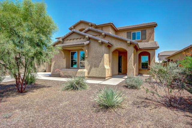 3024 E Wyatt Way, Gilbert, AZ 85297 (MLS #5910260) :: Riddle Realty Group - Keller Williams Arizona Realty