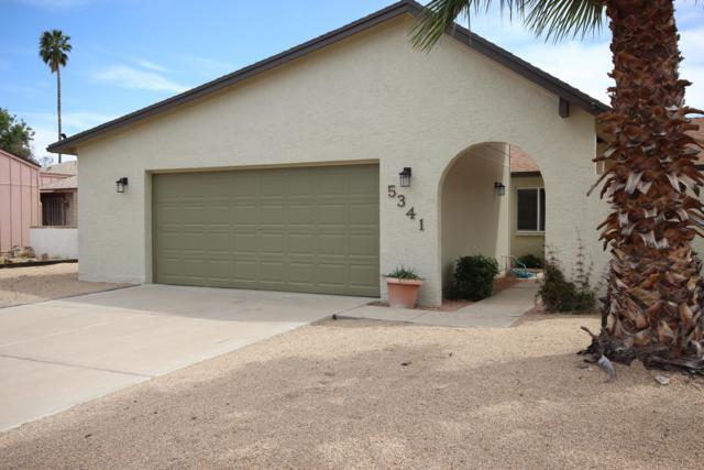 5341 W Carol Avenue, Glendale, AZ 85302 (MLS #5910282) :: Yost Realty Group at RE/MAX Casa Grande
