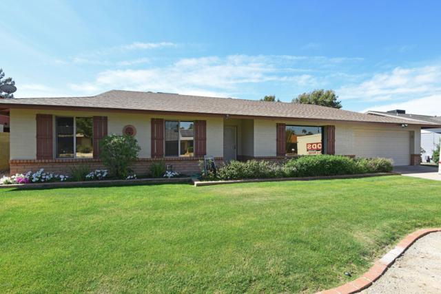 1101 E Rosemonte Drive, Phoenix, AZ 85024 (MLS #5910306) :: Yost Realty Group at RE/MAX Casa Grande