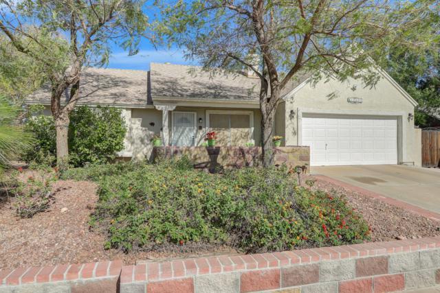 19601 N 14TH Street, Phoenix, AZ 85024 (MLS #5910313) :: Yost Realty Group at RE/MAX Casa Grande