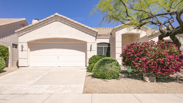 14639 N 100TH Way, Scottsdale, AZ 85260 (MLS #5910326) :: Yost Realty Group at RE/MAX Casa Grande