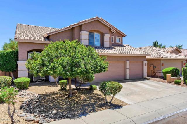 5127 E Charleston Avenue, Scottsdale, AZ 85254 (MLS #5910346) :: Yost Realty Group at RE/MAX Casa Grande