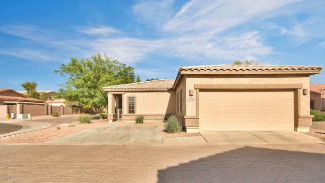 2731 E La Costa Drive, Chandler, AZ 85249 (MLS #5910407) :: Lux Home Group at  Keller Williams Realty Phoenix