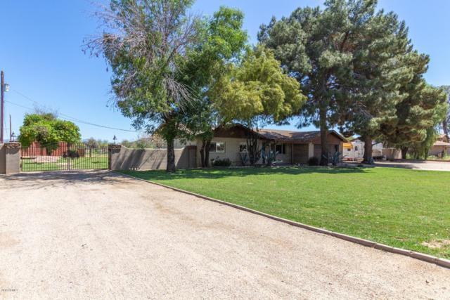 23411 S Via Del Arroyo, Queen Creek, AZ 85142 (MLS #5910418) :: Riddle Realty