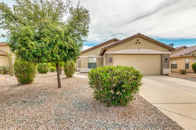 45043 W Paraiso Lane, Maricopa, AZ 85139 (MLS #5910419) :: Yost Realty Group at RE/MAX Casa Grande