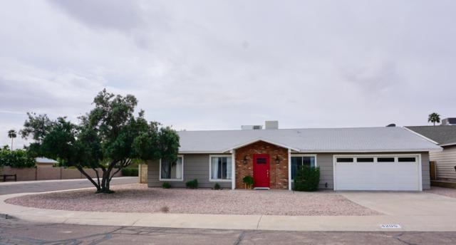 4205 E Winnetka Drive, Phoenix, AZ 85044 (MLS #5910432) :: Yost Realty Group at RE/MAX Casa Grande