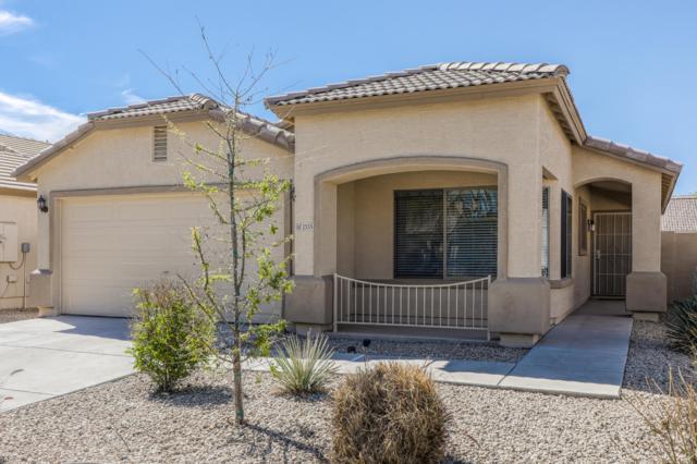 2555 E Silversmith Trail, San Tan Valley, AZ 85143 (MLS #5910441) :: Yost Realty Group at RE/MAX Casa Grande