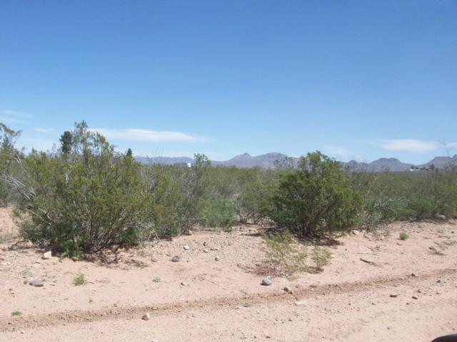 2630 E 20th Street, Douglas, AZ 85067 (MLS #5910454) :: RE/MAX Excalibur