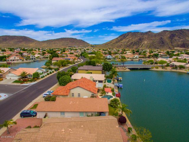 20245 N 55TH Avenue, Glendale, AZ 85308 (MLS #5910455) :: The Garcia Group