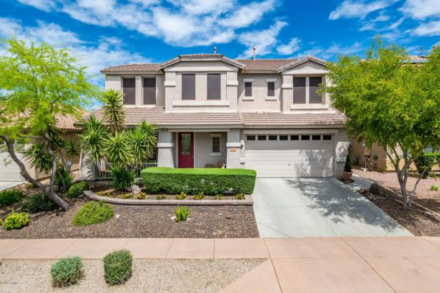 3038 W Via De Pedro Miguel, Phoenix, AZ 85086 (MLS #5910458) :: Openshaw Real Estate Group in partnership with The Jesse Herfel Real Estate Group