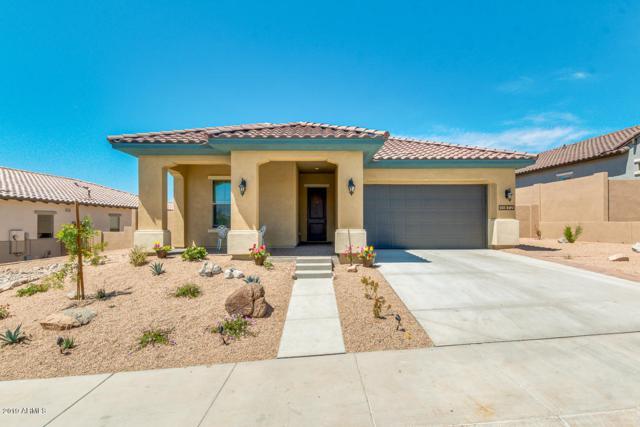 11872 S 183RD Drive, Goodyear, AZ 85338 (MLS #5910489) :: The Garcia Group