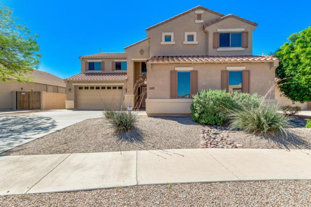 17657 W Andora Street, Surprise, AZ 85388 (MLS #5910510) :: Lux Home Group at  Keller Williams Realty Phoenix