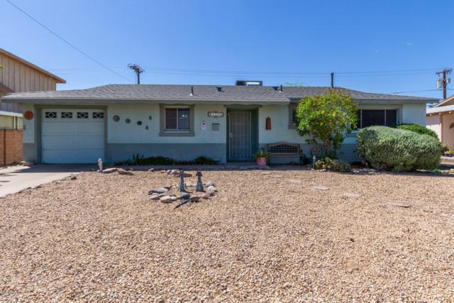1102 N 72ND Place, Scottsdale, AZ 85257 (MLS #5910563) :: Yost Realty Group at RE/MAX Casa Grande