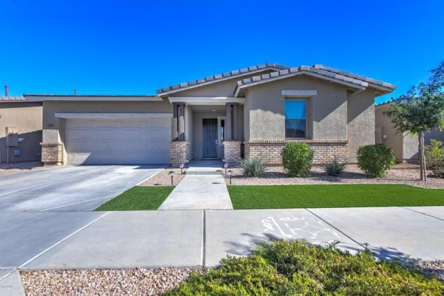 22464 E Munoz Street, Queen Creek, AZ 85142 (MLS #5910574) :: Revelation Real Estate