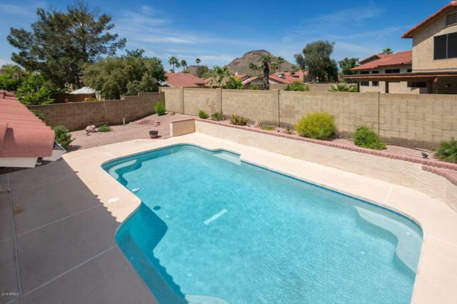 2010 E Sheena Drive, Phoenix, AZ 85022 (MLS #5910610) :: Team Wilson Real Estate