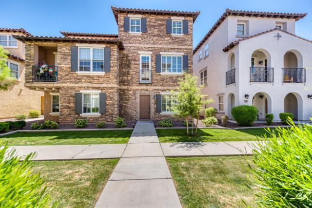 3622 E Edna Drive, Gilbert, AZ 85296 (MLS #5910620) :: Yost Realty Group at RE/MAX Casa Grande