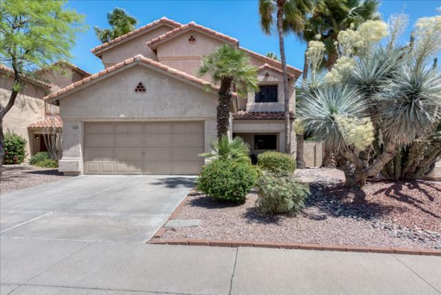13389 N 102ND Place, Scottsdale, AZ 85260 (MLS #5910680) :: Yost Realty Group at RE/MAX Casa Grande