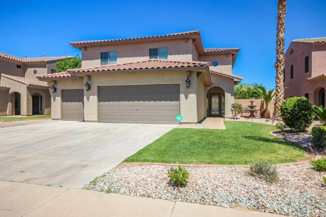 15938 W Port Royale Lane, Surprise, AZ 85379 (MLS #5910683) :: Lucido Agency