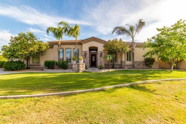 3217 E Indigo Circle, Mesa, AZ 85213 (MLS #5910717) :: Occasio Realty