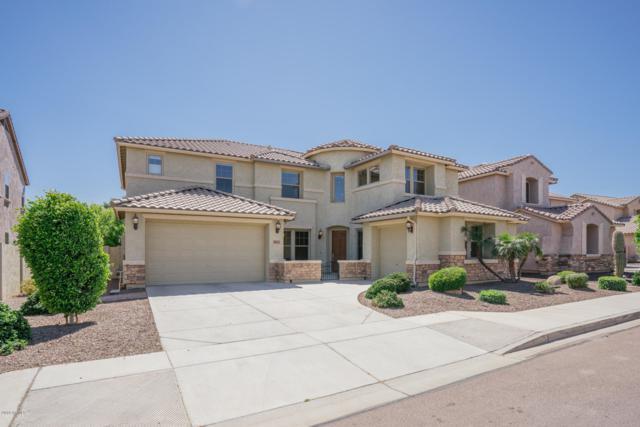 18163 W Diana Avenue, Waddell, AZ 85355 (MLS #5910724) :: Yost Realty Group at RE/MAX Casa Grande