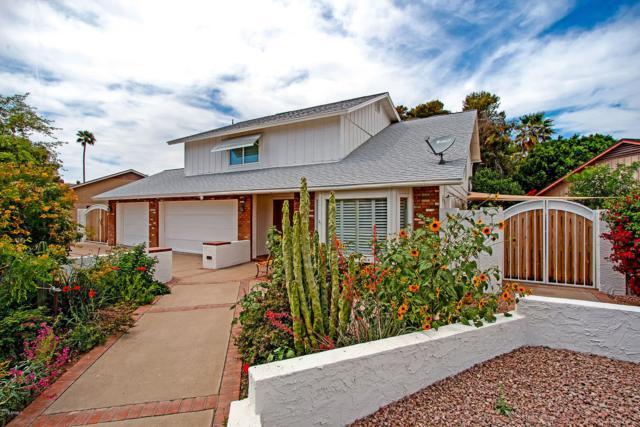 2744 S Los Altos, Mesa, AZ 85202 (MLS #5910743) :: Yost Realty Group at RE/MAX Casa Grande