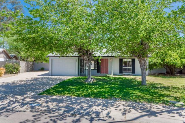 4631 S Filer Drive, Tempe, AZ 85282 (MLS #5910744) :: Yost Realty Group at RE/MAX Casa Grande